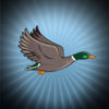 Flappy Space Duck app icon