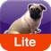 Farting Pug Lite iOS Icon