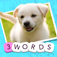3 Words: Cute Animals – a word game based on cuddly animal pictures app icon