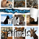 Earthy Wild Animal Sounds app icon