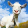 Crazy Goat app icon