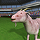 Goat Rush 3D Simulator App Icon