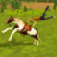 Horse Simulator app icon