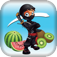 Fruit Samurai Warrior FREE iOS Icon