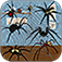 Attack and Smash the Spiders | A Popular Bug Biter Tapping Game PRO app icon
