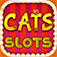 Cats Free Slots Casino Machines Jackpot app icon