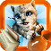Cat Simulator 2015 App Icon