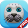 A Awkward Seal Flap PRO app icon