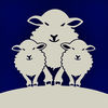 Sheep Game iOS Icon