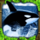 Orca Simulator App Icon