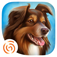 DogHotel - My boarding kennel for dogs App Icon