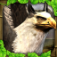 Griffin Simulator iOS Icon