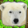 Polar Bear Simulator app icon