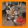 White Tail Deer Hunt app icon