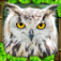 Owl Simulator iOS icon