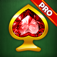 Spider solitaire: classic game PRO app icon