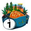 Bag Tag Challenge app icon
