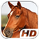 Horse Simulator HD Animal Life app icon