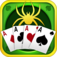 Card: Spider iOS Icon