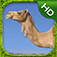 Camel Simulator app icon