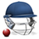 Cricket Captain 2015 app icon