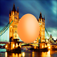Egg in England app icon
